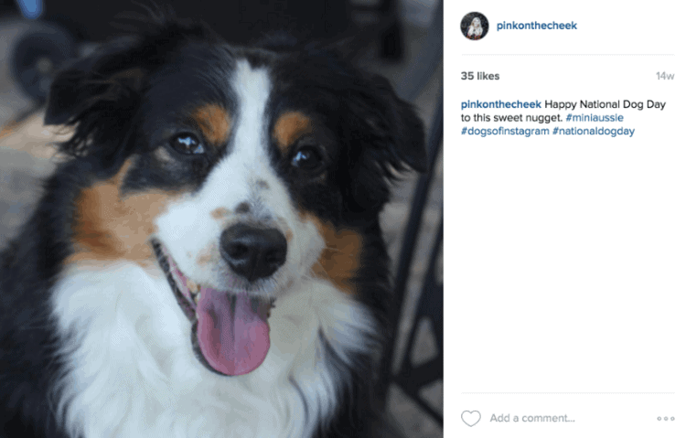 The Best Instagram Hashtags to Increase Likes