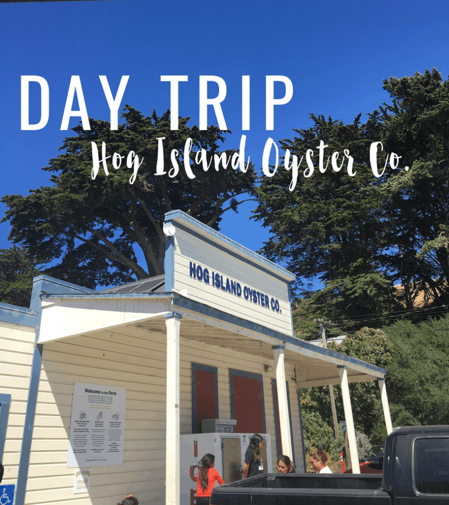 Day trip to Hog Island Oyster Company in Marshall, California